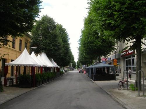 Bare Kungsgatan gjenstår før ankomst hotellet - også den prydet av store trær